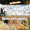 Tumi Album Hibrid Instrumental